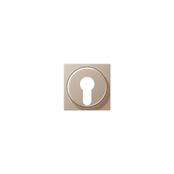 Jung A528PLCH Abdeckung für Schlüsselschalter champagner