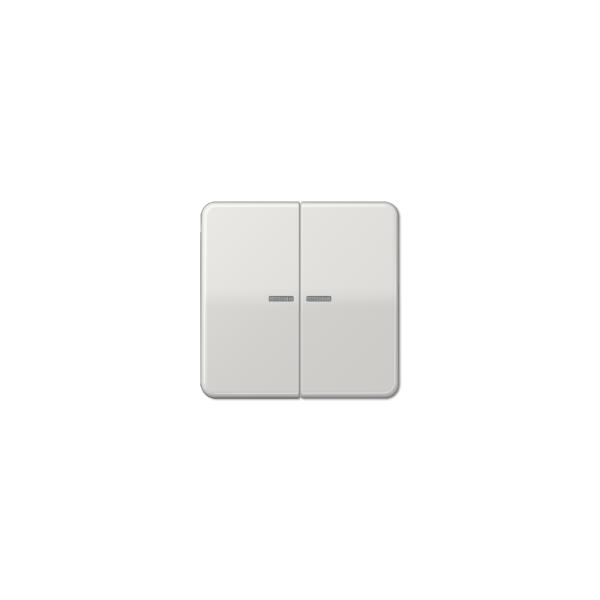 Jung CD595KO5LG Wippe für Serienschalter Kontroll lichtgrau