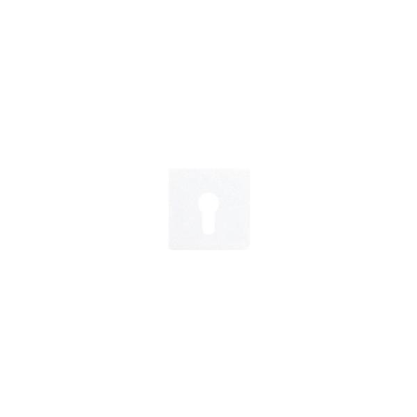 Jung CD525WW Abdeckung für Schlüsselschalter alpinweiß