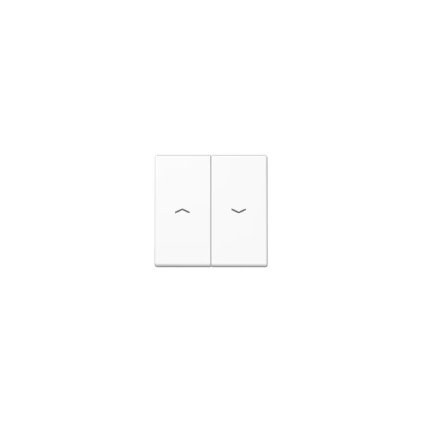 Jung A595BFPWW Wippe Jalousie-Schalter/-Taster Seria A alpinweiß hochglänzend