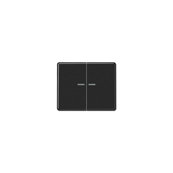 Jung SL595KO5SW Wippe Serienschalter Lichtleiter schwarz
