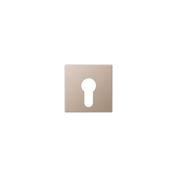 Jung A525PLCH Abdeckung für Schlüsselschalter champagner