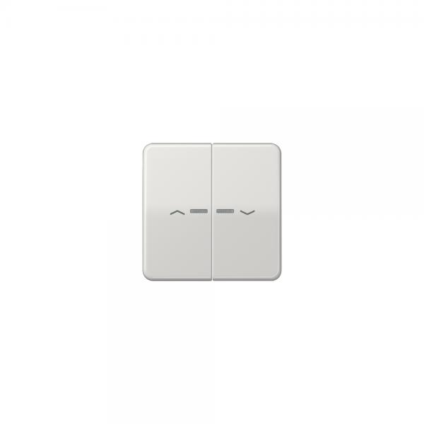 Jung CD595KO5PLG Wippe für Taster BA 2fach mit Lichtleiter und Symbol lichtgrau
