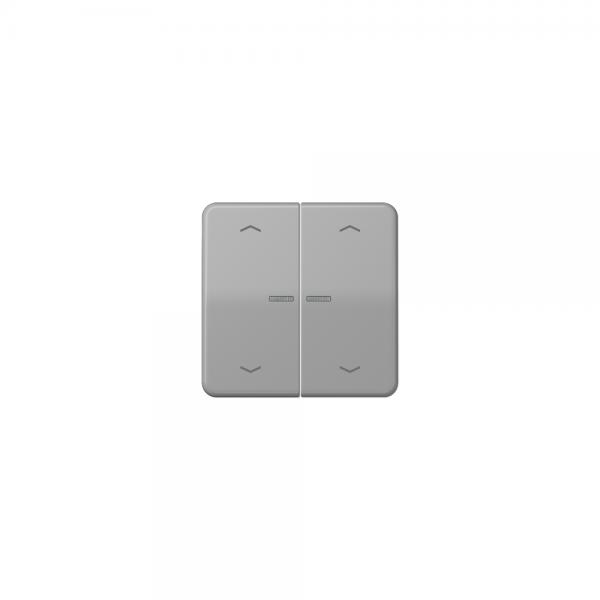 Jung CD595KO5MPGR Wippe für Taster BA 2fach mit Lichtleiter und Symbol grau