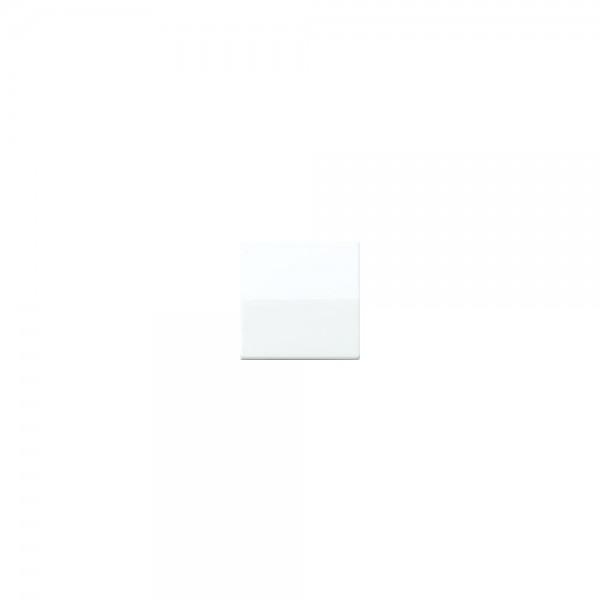 Jung AS591BFWW Wippe Schalter/Taster Serie AS alpinweiss hochglänzend
