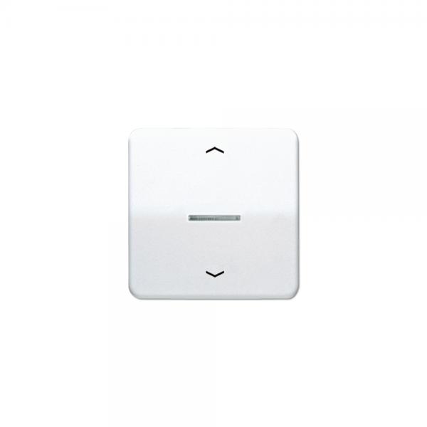 Jung CD590KO5PWW Wippe für Taster BA 1fach mit Lichtleiter und Symbol alpinweiß