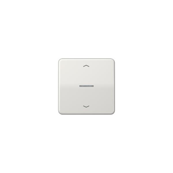 Jung CD590KO5PLG Wippe für Taster BA 1fach mit Lichtleiter und Symbol lichtgrau