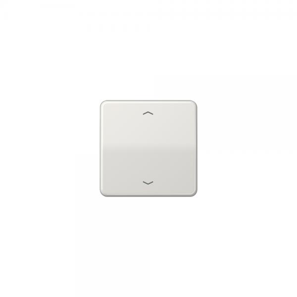 Jung CD590PLG Wippe Symbole für Taster BA 1fach lichtgrau