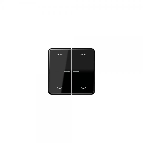 Jung CD595KO5MPSW Wippe für Taster BA 2fach mit Lichtleiter und Symbol schwarz