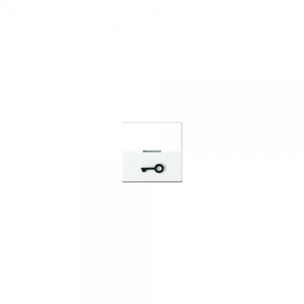 Jung AS591T1KO5WW Wippe abtastbar Symbol Tür Serie AS alpinweiß