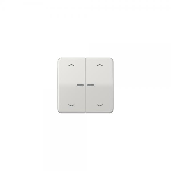 Jung CD595KO5MPLG Wippe für Taster BA 2fach mit Lichtleiter und Symbol lichtgrau
