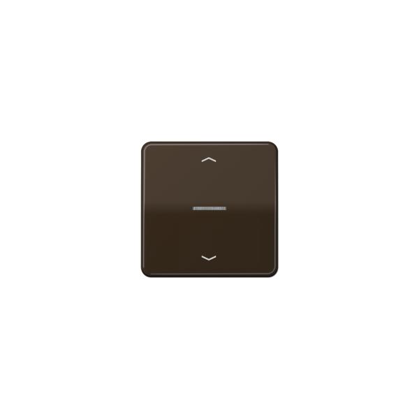 Jung CD590KO5PBR Wippe für Taster BA 1fach mit Lichtleiter und Symbol braun