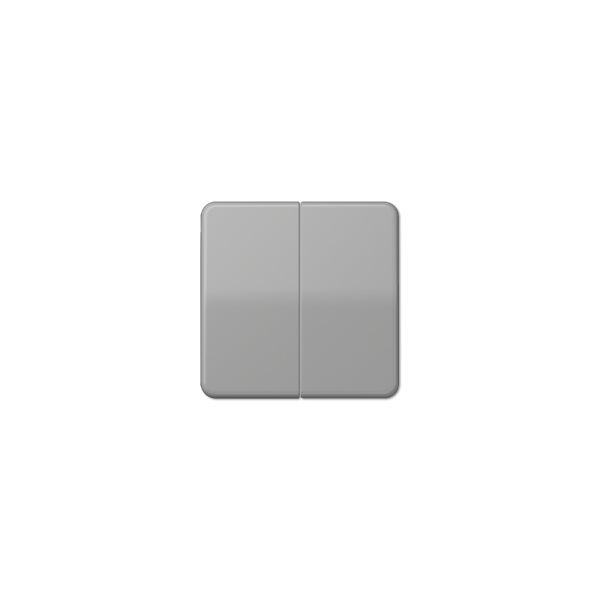 Jung CD595BFGR Wippe für Serienschalter bruchsicher grau hochglänzend