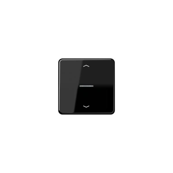 Jung CD590KO5PSW Wippe für Taster BA 1fach mit Lichtleiter und Symbol schwarz