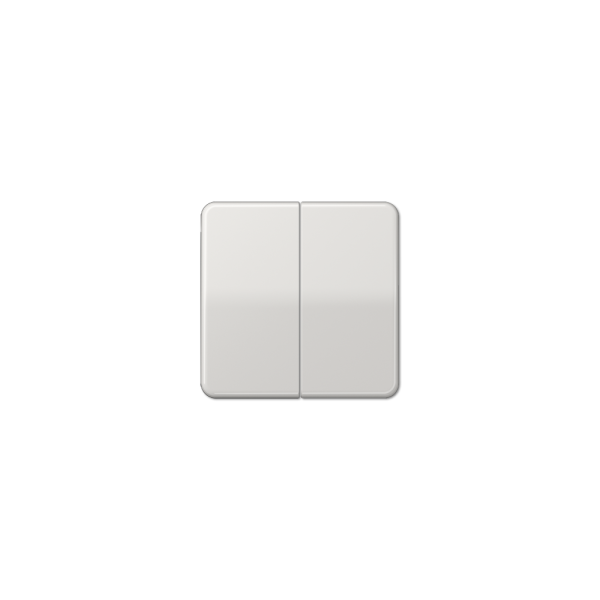 Jung CD595BFLG Wippe für Serienschalter bruchsicher lichtgrau hochglänzend