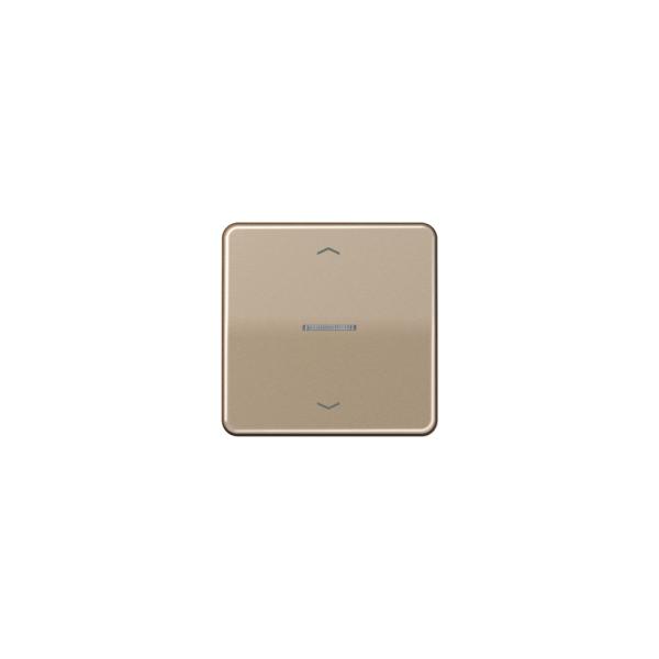 Jung CD590KO5PGB Wippe für Taster BA 1fach mit Lichtleiter und Symbol gold-bronze