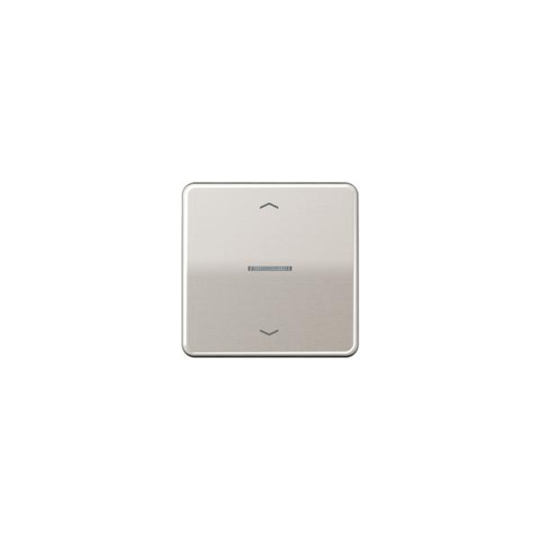 Jung CD590KO5PPT Wippe für Taster BA 1fach mit Lichtleiter und Symbol platin