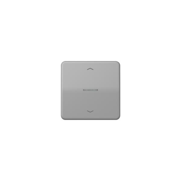 Jung CD590KO5PGR Wippe für Taster BA 1fach mit Lichtleiter und Symbol grau