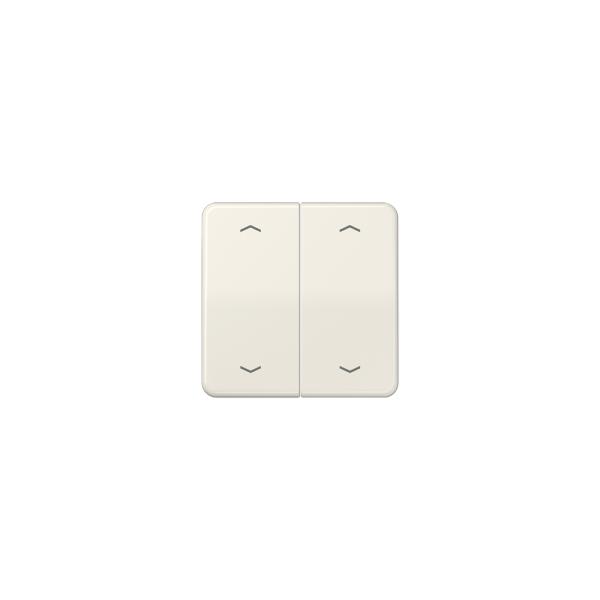 Jung CD595MP Wippe Symbol für Taster BA 2fach cremeweiß