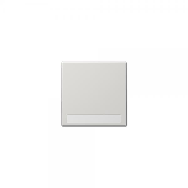 Jung LS990NALG Wippe mit Schriftfeld lichtgrau