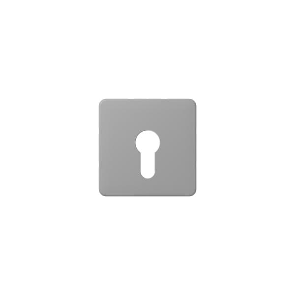 Jung CD525GR Abdeckung für Schlüsselschalter grau