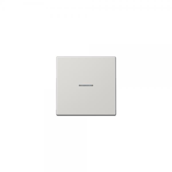 Jung LS990KO5LG Wippe Schalter/Taster Kontroll mit Lichtleiter lichtgrau