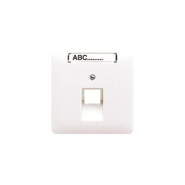 Jung CD569-1NAUALG Abdeckung IAE/UAE-Anschlussdose mit Schriftfeld lichtgrau