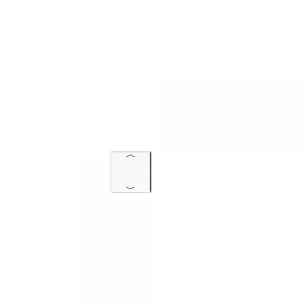 Jung A404TSAPANM23 Taste 4fach mit Symbolen Auf/Ab anthrazit matt