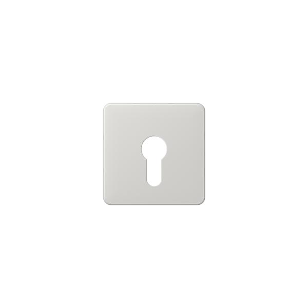 Jung CD525LG Abdeckung für Schlüsselschalter lichtgrau