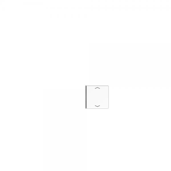 Jung A404TSAPANM14 Taste 4fach mit Symbolen Auf/Ab anthrazit matt