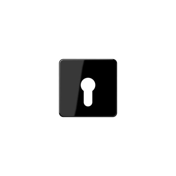 Jung CD525SW Abdeckung für Schlüsselschalter schwarz