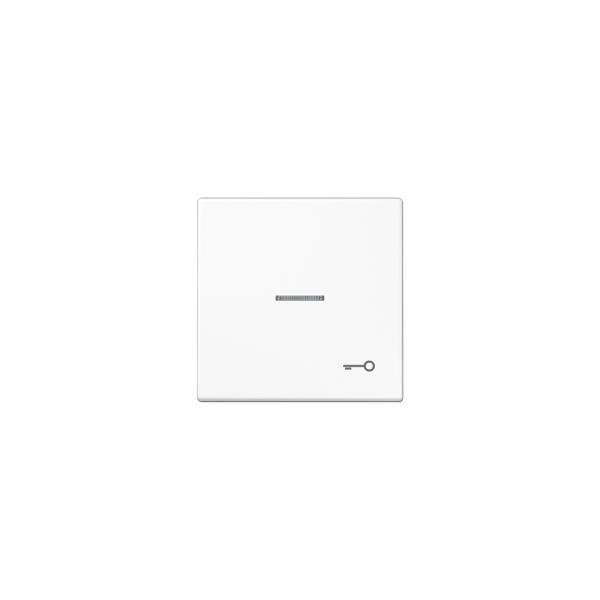 Jung LS990KO5TWW Kontroll-Wippe mit Symbol Tür alpinweiß
