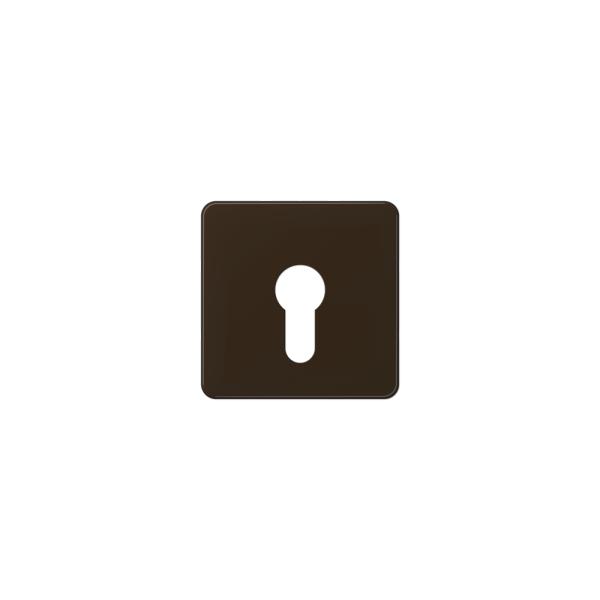 Jung CD525BR Abdeckung für Schlüsselschalter braun