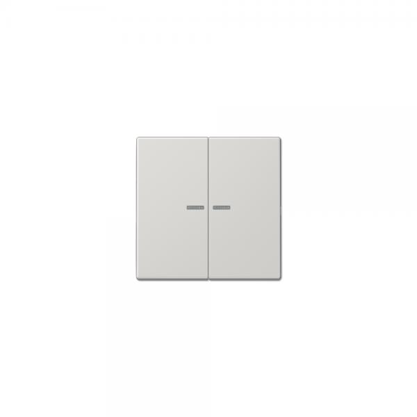 Jung LS995KO5LG Serien-Wippe mit Lichtleiter lichtgrau