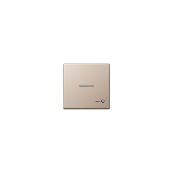 Jung A590KO5TCH Kontroll-Wippe mit Symbol Tür Serie A champagner